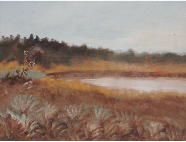 Картина Природный пруд, AM0391