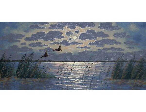 Картина Утки на озере, AM0830
