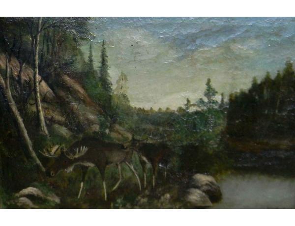 Õlimaal Põdrad järve kaldal, AM0764