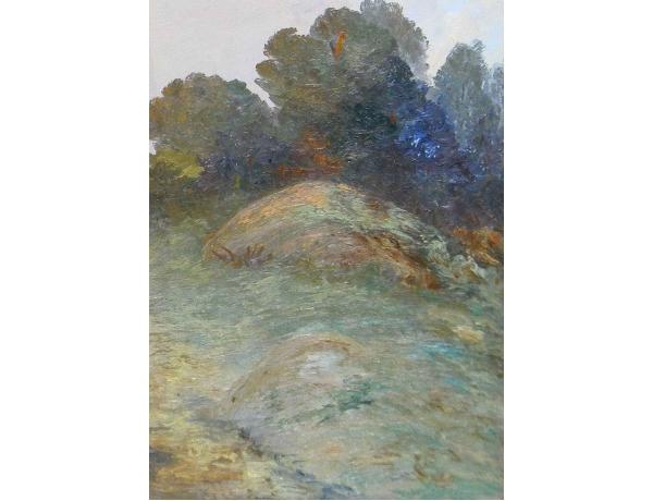 Картина Большой камень и кустарник, AM0639
