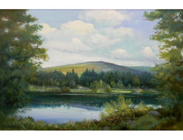 Картина маслом Летний пруд в лесу, AM1373