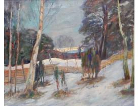 Õlimaal Talvine maastik mäe nõlval