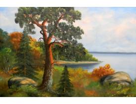 Картина маслом Одинокая сосна на берегу озера