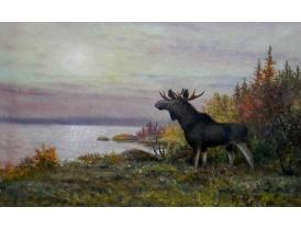 Картина Одинокий лось на берегу озера